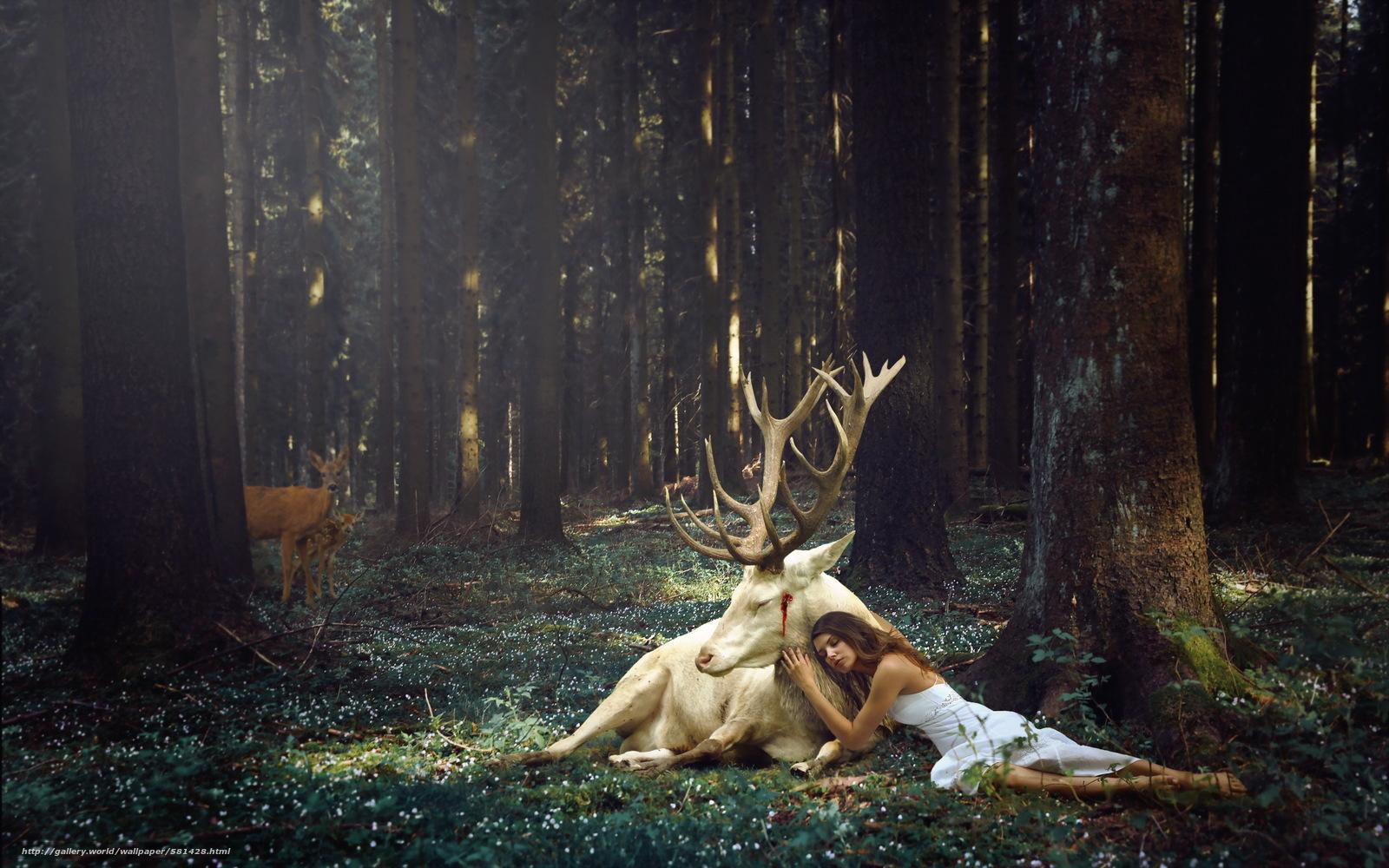 Прижался к девушке в лесу рассказ 12 фотография
