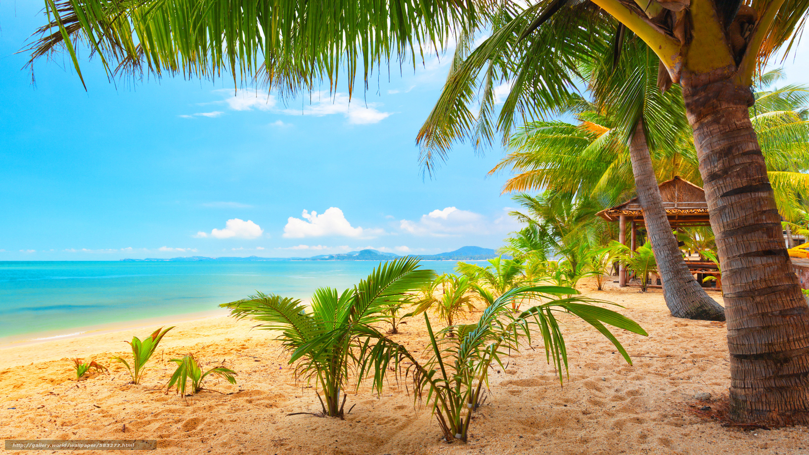 Sunrise beach wallpapers images with high definition wallpaper 1920x1200 px 20468 kb