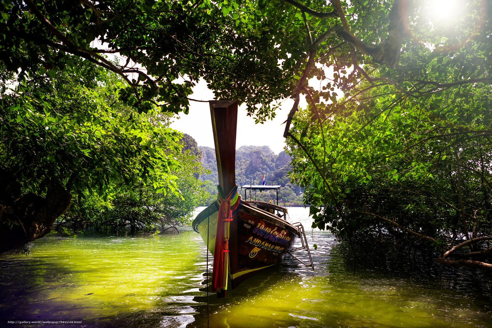 вода лодка деревья