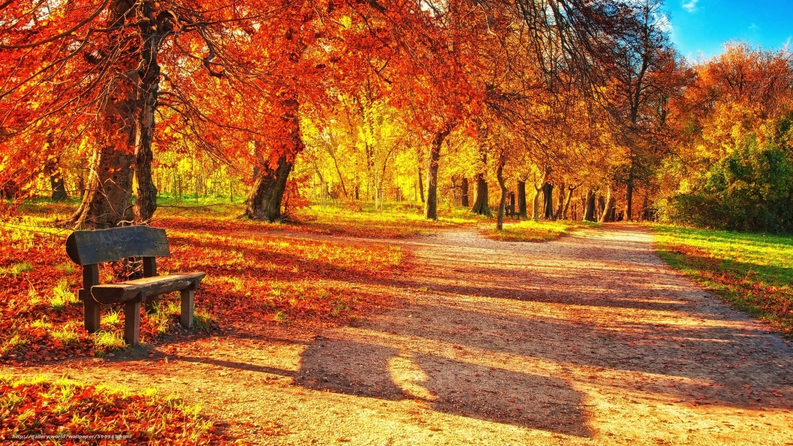 Wallpapers A Bench Trees Footpath Park №590555 / Section