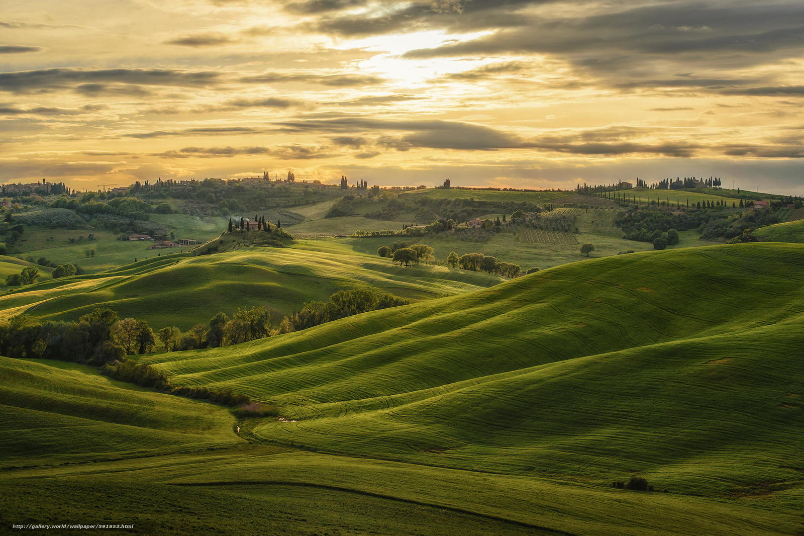 Toskana-Landschaft Am Sonnenuntergang Stockfoto - Bild: 41598880