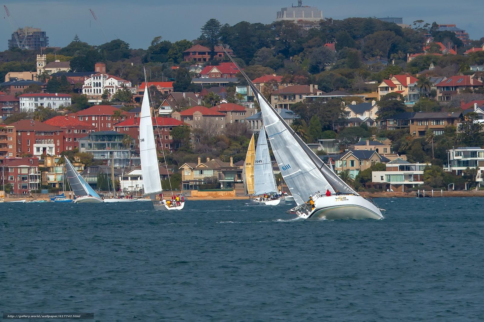 Скачать на телефон обои фото картинку на тему Sydney Harbour, Sydney, Australia, Сиднейская бухта, Сидней, Австралия, яхты, регата, здания, разширение 2048x1365
