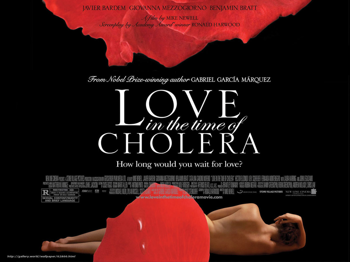 critical essays on love in the time of cholera