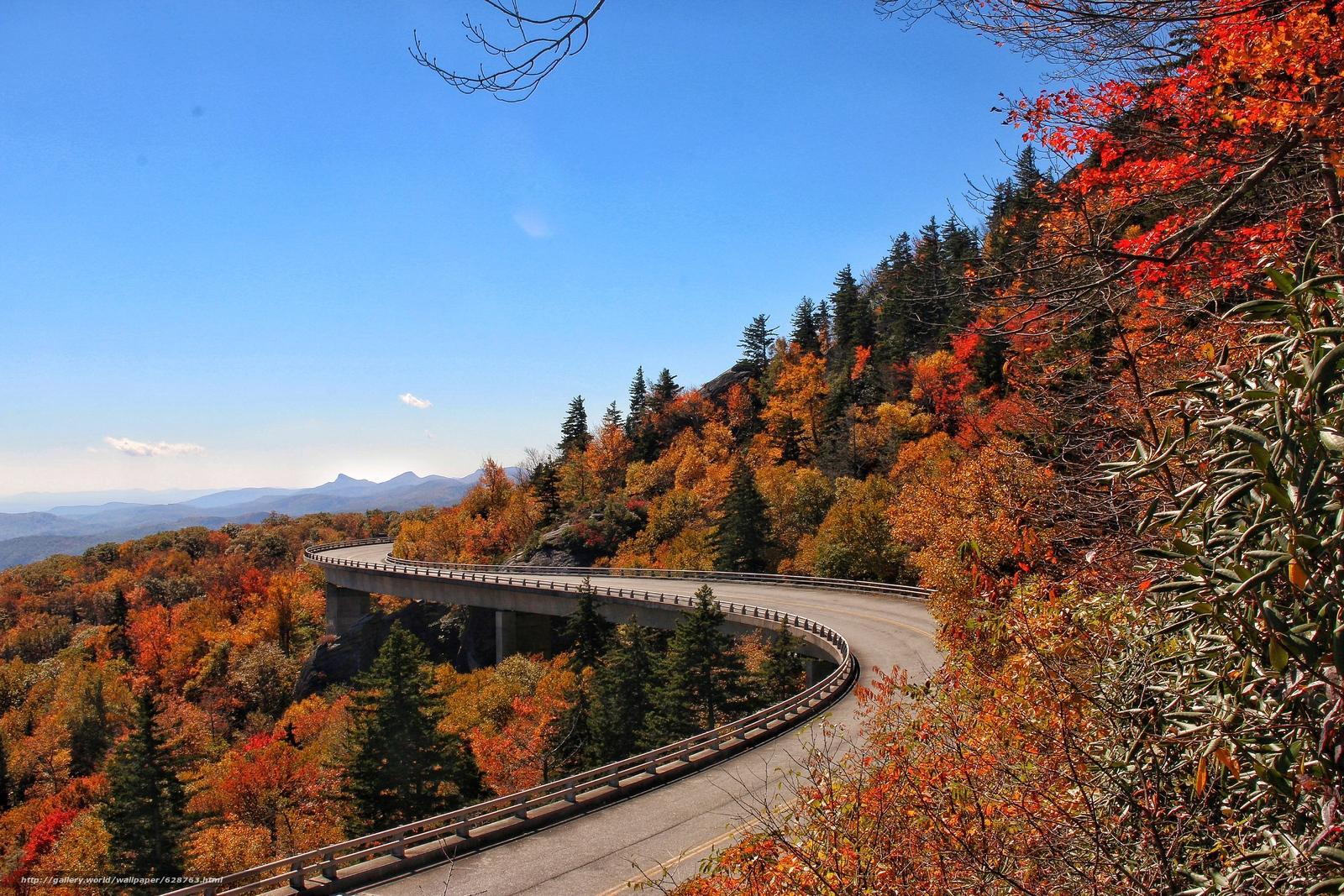 outono, ponte, North Carolina, derevya.peyzazh, Blue Ridge Parkway Linn Cove Viaduct