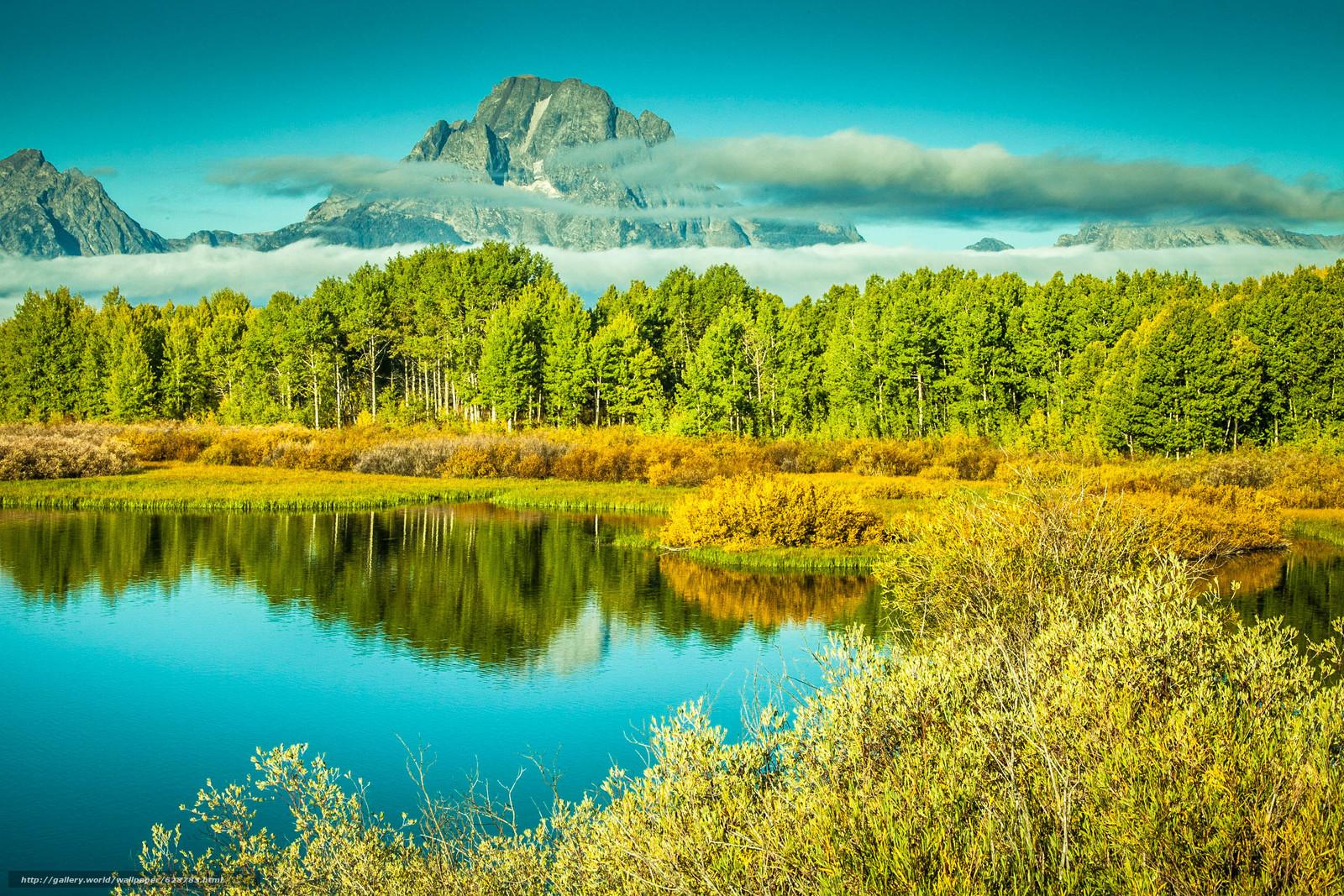 ?rvores, outono, Montanhas, paisagem, lago