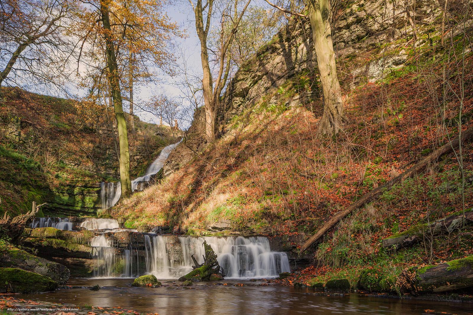 cachoeira, pequeno rio, Hills, natureza, outono