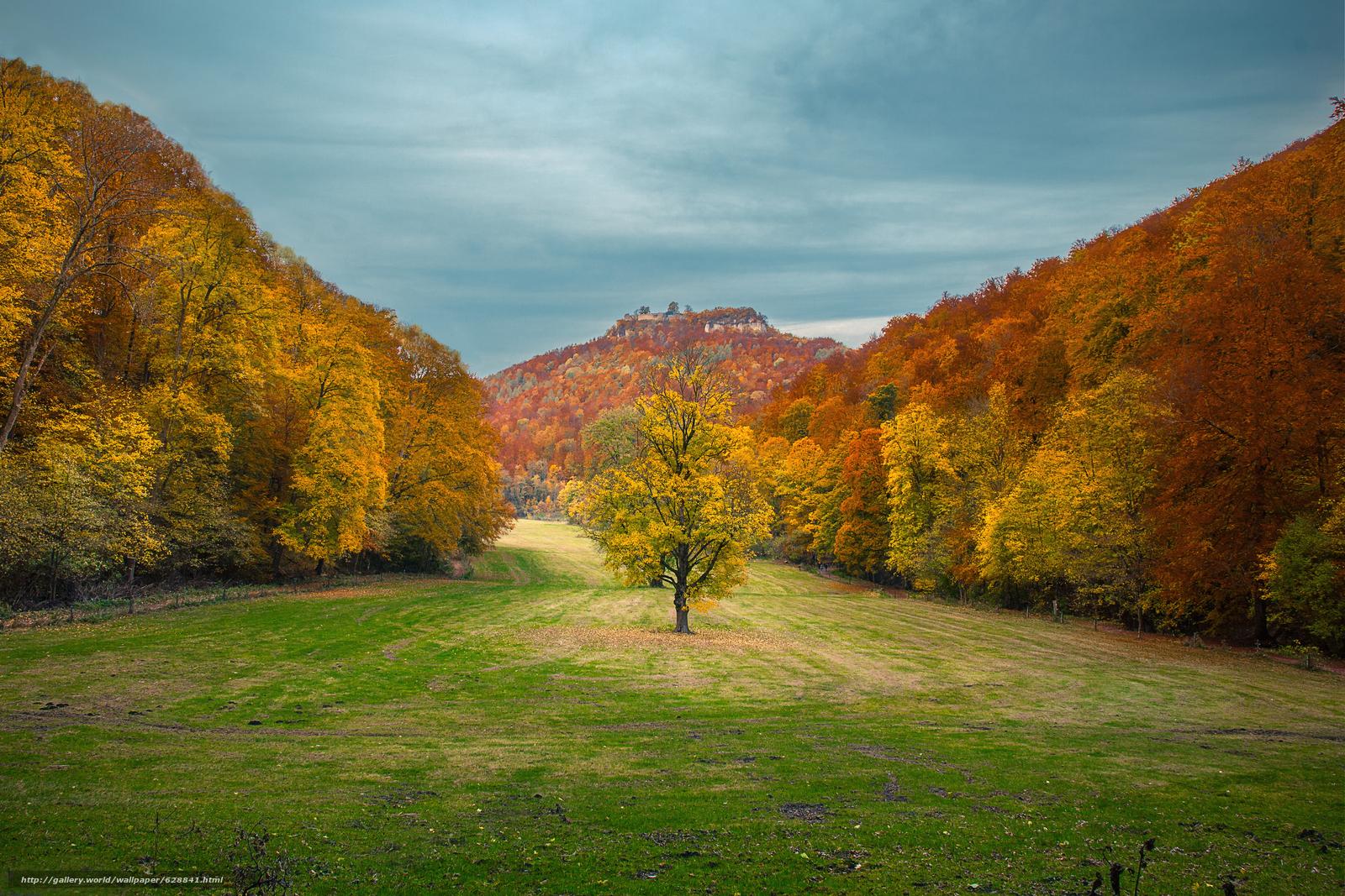 деревья, горы, поле, пейзаж, осень