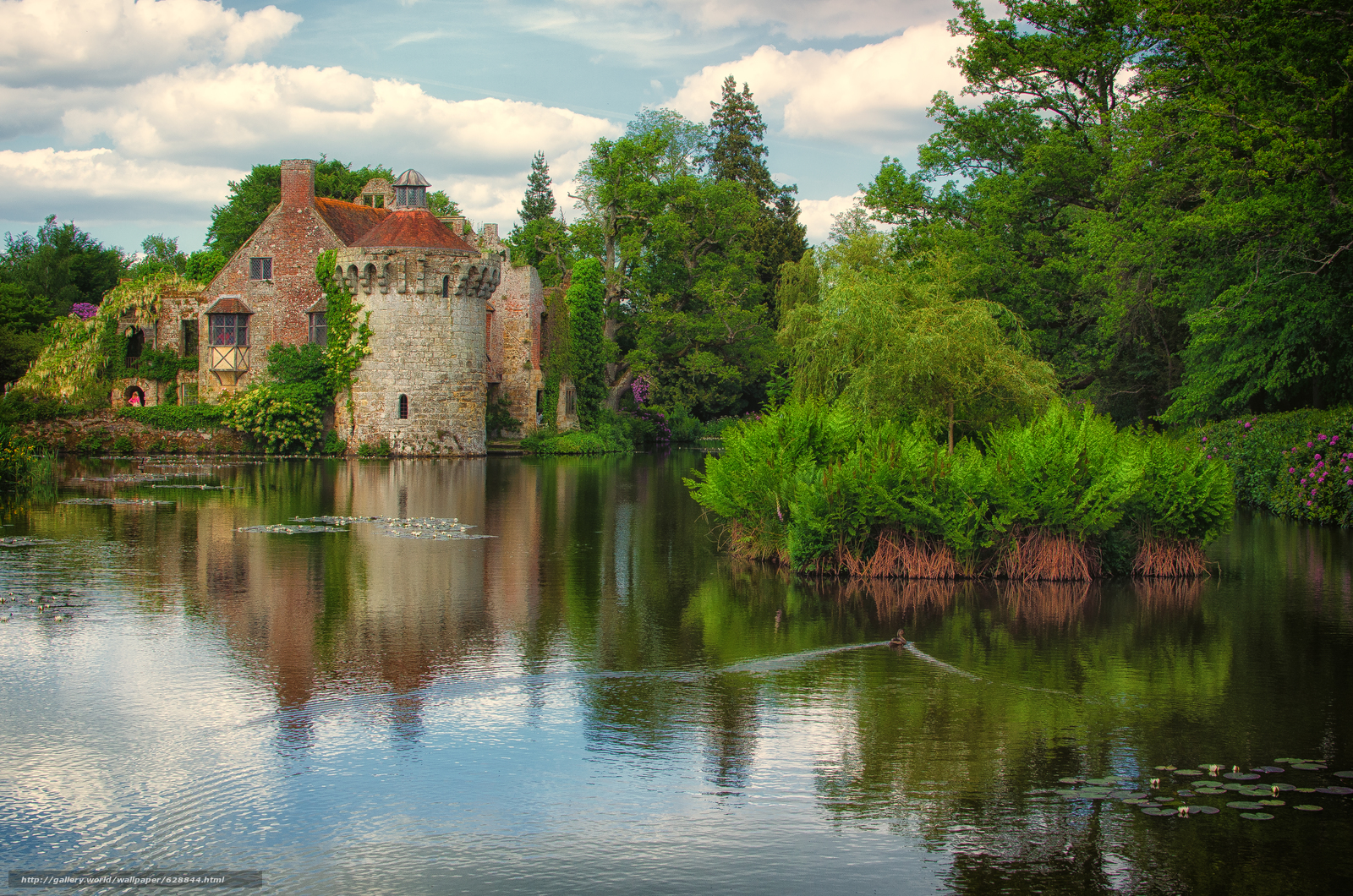 Kent, озеро, Lamberhurst, деревья, Scotney Old Castle, замок, пейзаж