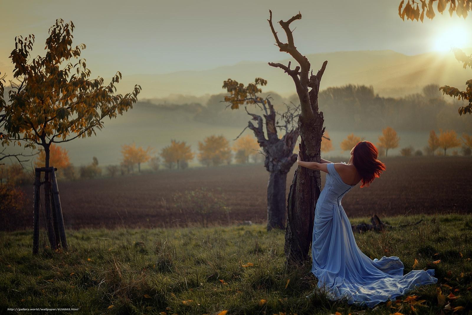 trees, autumn, dress, sunset, girl, mood