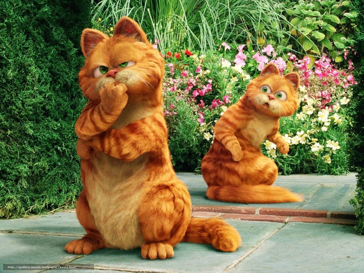 Смотреть онлайн кот гарфилд 19 фотография
