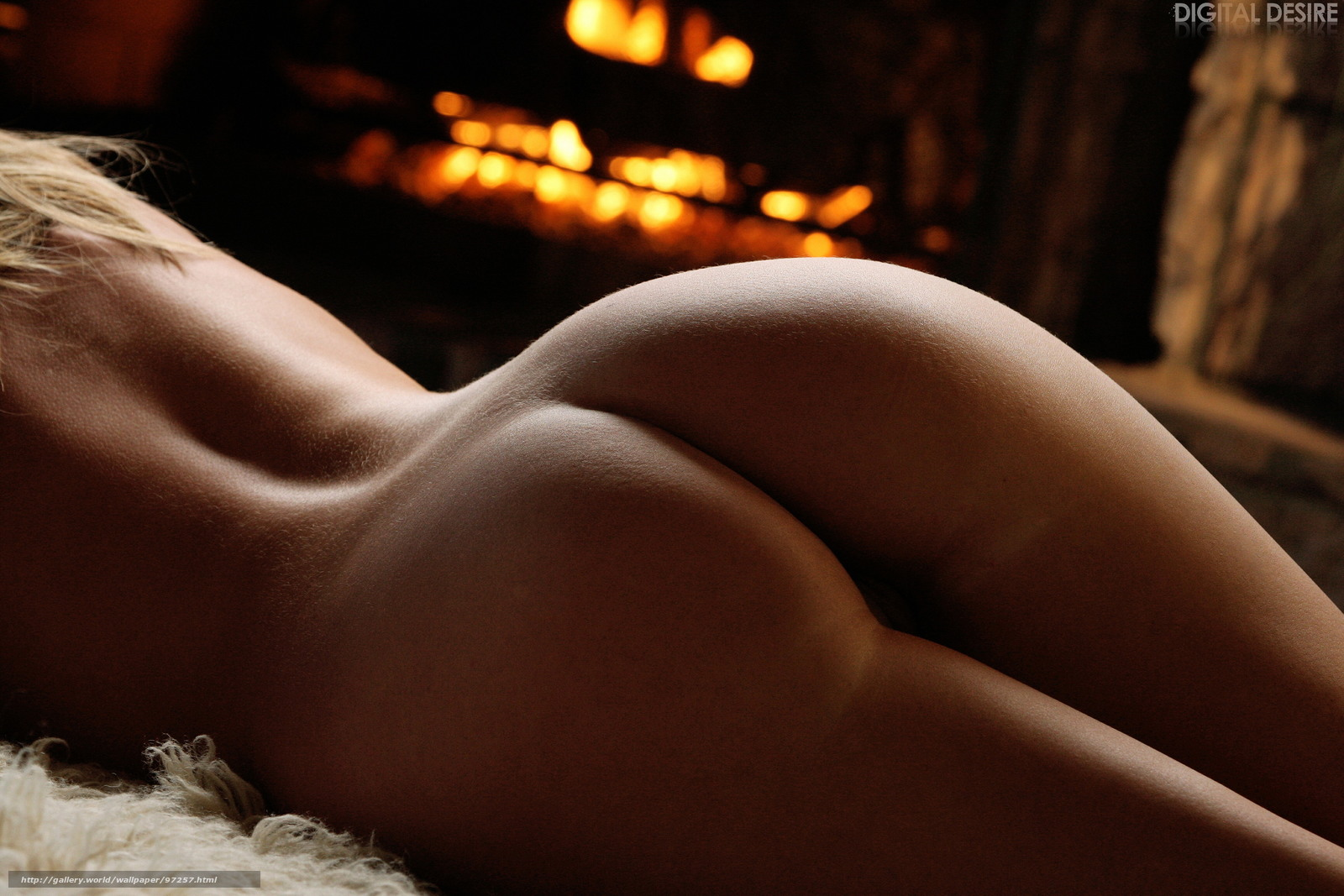 Фото самых эротических женских попок 19 фотография