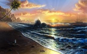mer, flots, voilier, coucher du soleil, mouette, cte, paume
