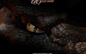 Подземелье драконов, Dungeons & Dragons, фильм, кино