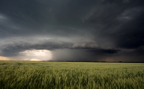 nature, landscape, field, cloud, storm, summer