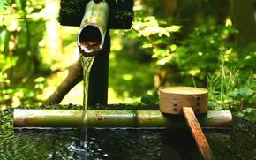 японский сад, тсукубаи, вода, бамбуковый, ковш, зелень, камень