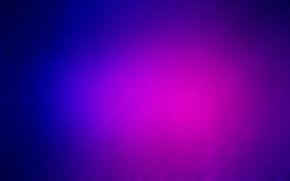 紫, 青, バンド