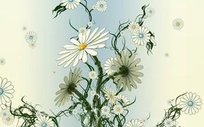 plano, secar, Flores, lento, Margaridas