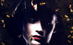 Candyman 2: Farewell to the Flesh, Candyman: Farewell to the Flesh, film, movies