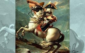 кролик, наполеон, конь