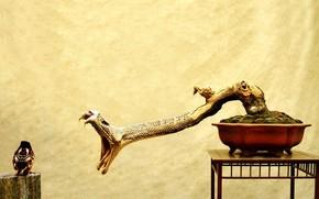змея, атака, птица