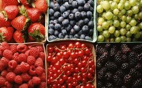 Berries, raspberry, strawberry