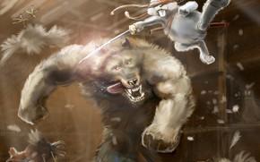 loup, livre, poulailler, pe, combattre