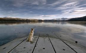 Piastra, lago, Montagne