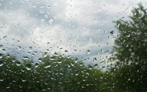 ガラス, 滴, 雨, 夏