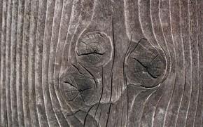 текстура, дерево, сучки
