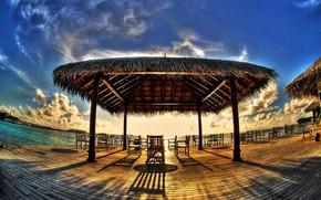 cafe, coast, canopy, tropics