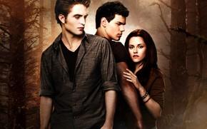 Vampires, twilight