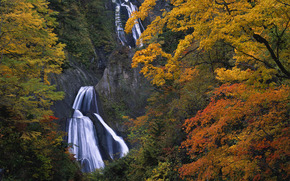 autunno, cascata, Rocks