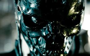 terminator, head