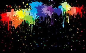 краска, цвет, бабочки