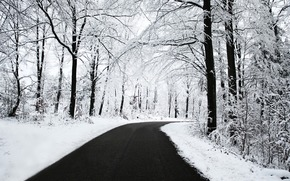 winter, snow, road, forest