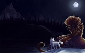 wolf, moon, night