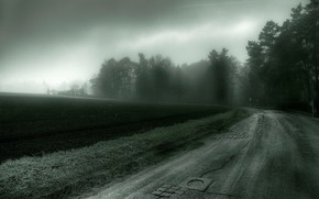strada, campo, alberi, tristezza