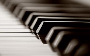 Macro, Piano, Botn, Claves, Fotos, Instrumentos Musicales