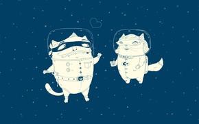 скафандр, космонавт, кошаки, любовь