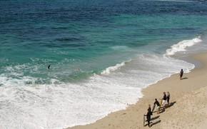 пляж, песок, море, волные, люди