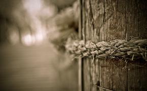 Macro, corda, cordame, foto, Corde, albero, legno, Carta da parati