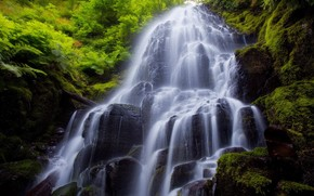 Wasserfall, Steine, Pflanzen