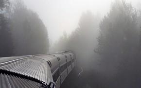Nebel, Zug, Autos