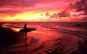 mare, surfer, tramonto, rosso