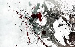 blanc, pulvrisation, loup