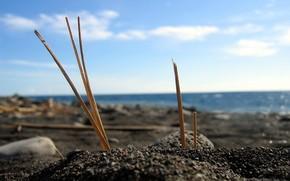 Sticks, sand, Sea