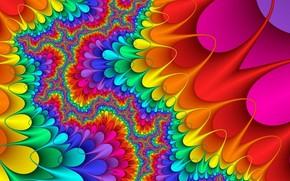 палитра, фрактал, цвет