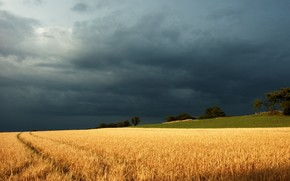 field, clouds, Thunderstorm