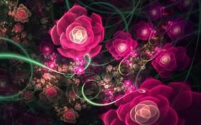 узор, розы, фракталы