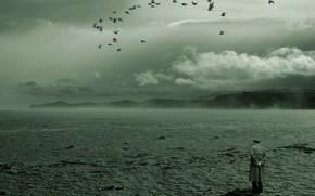 deserto, Uccelli, solitudine